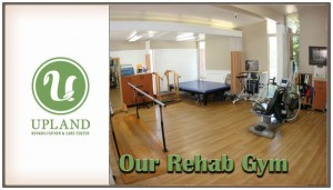 Our Rehab Gym